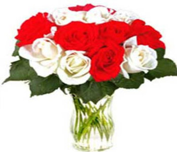 15_cut_red___white_roses