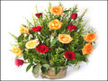 15 Red & Yellow Roses Basket