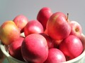 Fresh Apples(Dozen - 2.4KG)